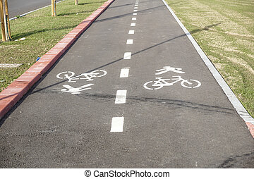 Pedestrian and bicycle riders sharing the street lanes with road marking in the city.