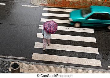 Pedestrian Crossing in the Rain. Top View.