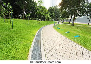 pedestrian in park