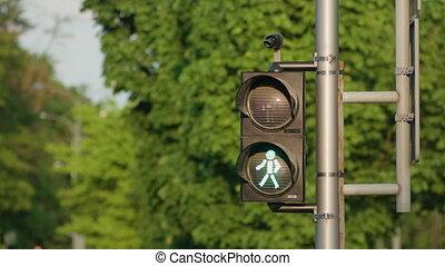 Pedestrian Lights Green. Close-up shot