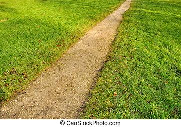 pedestrian path through a lawn