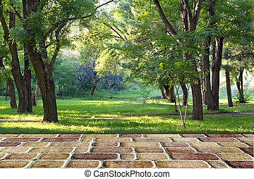 Pedestrian stone path in autumn park