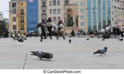 pedestrian walking on the Taksim Sq