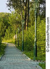 pedestrian walkway in the park in summer