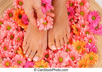pedicured, beleza, foto, pés, tratamento, agradável