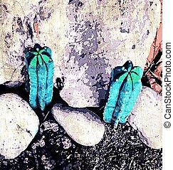 pedra, cacto, experiência verde, chão