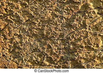 pedra calcária, closeup, vista, com, visível, texture.