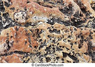 pedra calcária, resistido, mar, mediterrâneo, litoral