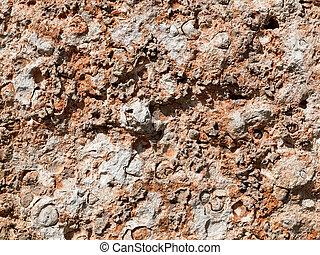 pedra calcária, textura