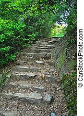 pedra, estiramento, luz, longo, passos, guiando