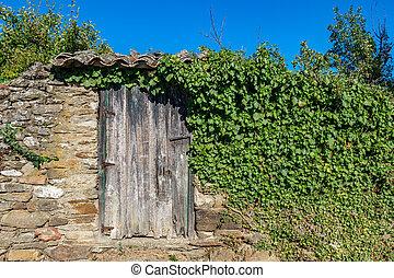 pedra, porta, madeira, vindima, sobre, parede, hera