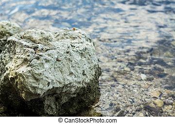 pedras, limpo, water., água, lote, sob, gelado, rio, transparente