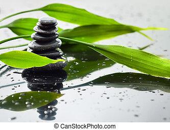 pedras, spa, bambu, fundo