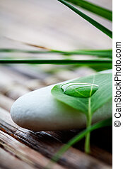 pedras, zen