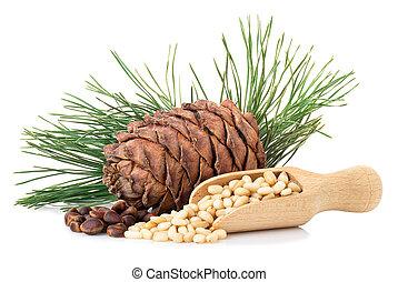 cedar nuts in wooden scoop