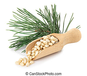cedar nuts in wooden scoop