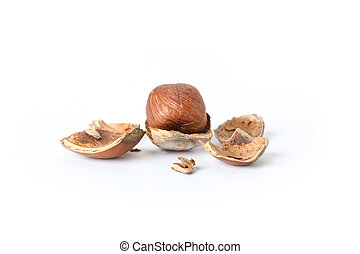 peeled hazelnut on white background