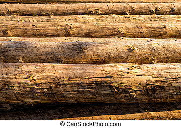 Peeled logs lying in piles on the ground on a sunny day.