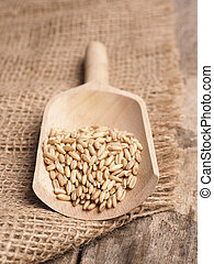 Organic peeled oats in a wooden shovel on a rustic wooden table