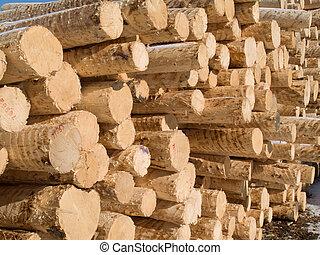 peeled pine logs in yard of paper factory