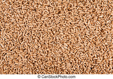 Peeled sunflower seeds background.