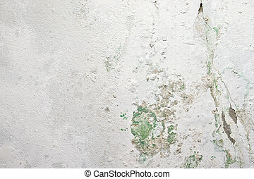 Peeling paint and moss on old concrete wall
