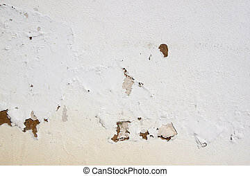 Peeling Paint on Exterior Wall Caused by Rising Damp - ...