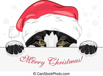 Peeping funny cat in a Christmas cap. Vector illustration