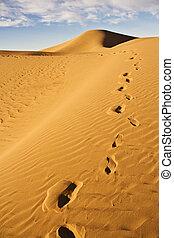 pegada, duna areia