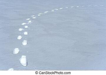 pegadas, caminho, em, a, neve