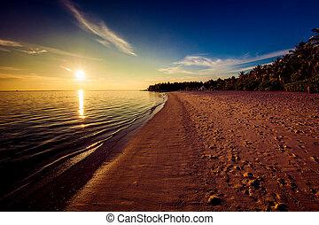 pegadas, ligado, a, praia tropical, em, pôr do sol