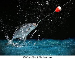 pegando, um, peixe grande, à noite