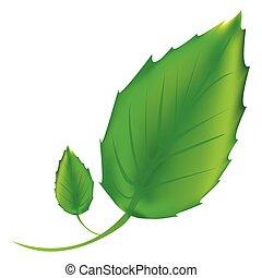 pegatina, hojas verdes, icono