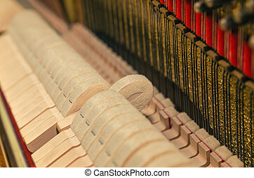 pegs and strings of the old piano