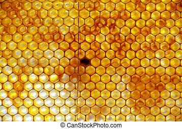 peine miel