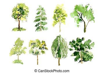 peint, aquarelle, collection, arbres