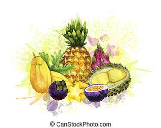 peinture aquarelle, fruit, eclabousse, tropique, composition