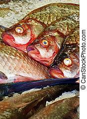 peixe, 2, venda