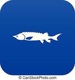peixe azul, esturjão, digital, fresco, ícone