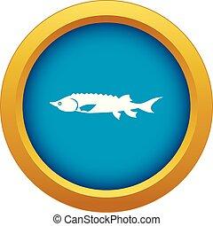 peixe azul, isolado, esturjão, vetorial, fresco, ícone