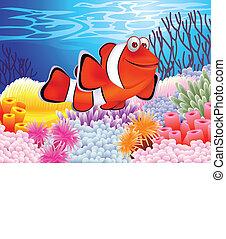 peixe, caricatura, palhaço