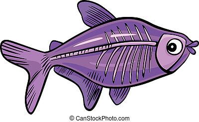 peixe, caricatura, raio x