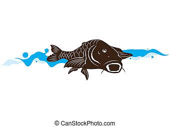 peixe, carpa, vetorial, ilustração