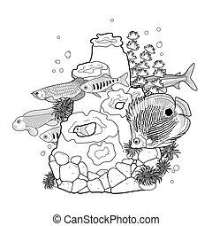 peixe, coral, gráfico, aquário, recife