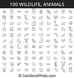 peixe, dino, tiger, signs., cavalo, macaco, doméstico, concept., jardim zoológico, golpes, ícones, editable, fauna, ilustração, animais, rinoceronte, mar, linha, cão, raposa, gato, floresta, vetorial, africano, urso, lobo