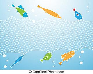 peixe, e, rede de pescar