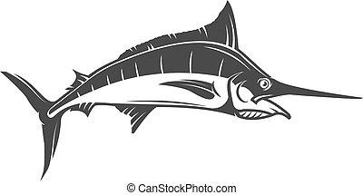 peixe-espada, isolado, ilustração, experiência., vetorial, branca, ícone