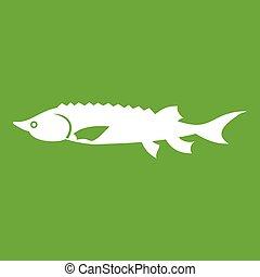 peixe fresco, esturjão, verde, ícone