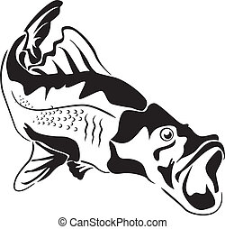 peixe grande, predador