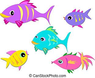 peixe, grupo, coloridos